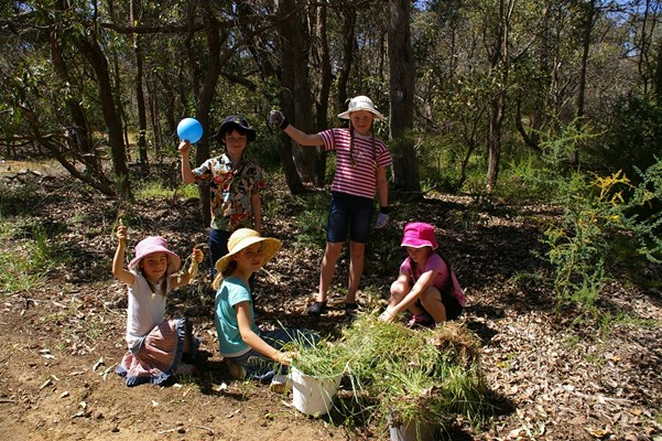 Environmental - Weeding at Poison Gully