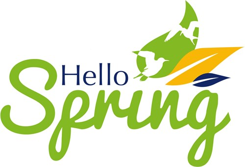 IMG: Hello Spring